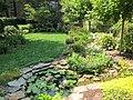 Garden Update - panoramio.jpg