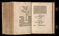 Gart der gesuntheit - Ortus sanitatis (Herbarius) MET DP358439.jpg