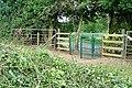 Gate near Coombe End Farm - geograph.org.uk - 1386440.jpg