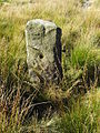 Gatepost on Greave Pasture - geograph.org.uk - 57410.jpg