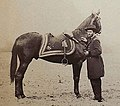 General Grant and horse, Cincinnati, photo.jpg