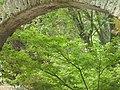 Giardino di Ninfa 147.jpg