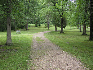 Gifford Pinchot State Park - The picnic area in Gifford Pinchot State Park