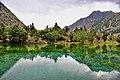 Gilgit naltar valley.jpg