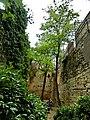 Girona - panoramio (43).jpg