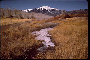 Great Sand Dunes National Park and Preserve GRSA3212.jpg
