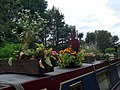 Green fingers on the Regent's Canal - geograph.org.uk - 1538935.jpg