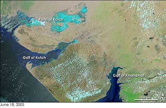 Great Rann of Kutch - Rann of Kutch on the top left in turquoise colour. The Gulf of Kutch is further down below the Kutch region. Image: NASA Earth Observatory