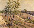 古斯塔夫·卡耶博特 - 花园,小Gennevilliers.jpg
