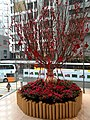 HK 中環 Central 歷山大廈 Alexandra House mall CNY tree red lucky signs January 2020 SS2 03.jpg