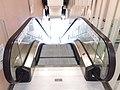 HK 旺角 Mongkok 奶路臣街 Nelson Street 麥花臣匯 MacPherson Place 室內運動場 Stadium lobby interior escalators HKPA August 2018 SSG 01.jpg