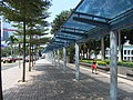HK Sheung Wan Central Piers Man Kwong Street covered walkway trees Oct-2012.JPG