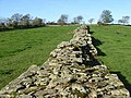 Hadrian's Wall, broad and narrow - geograph.org.uk - 1017675.jpg