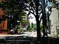 Hanakumacho - panoramio (9).jpg