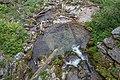 Hartelsgrabenbach Stream, Gesäuse National Park, Ennstaler Alpen, Austria 08.jpg