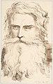 Head of a Bearded Old Man MET DP804403.jpg