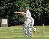 Hertfordshire County Cricket Club v Berkshire County Cricket Club at Radlett, Herts, England 006.jpg