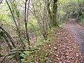Hidden gorge - geograph.org.uk - 1722166.jpg