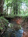 High Hurstwood Stream - geograph.org.uk - 1376623.jpg