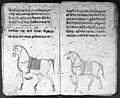 Hindi Manuscript 191, fols. 26 verso, 27 rec Wellcome L0024219.jpg