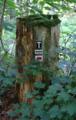 Hoher Vogelsberg Schotten Hiking Trail Blazing VHC.png