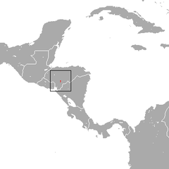 Honduran Small-eared Shrew area.png