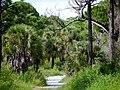 Honeymoon Island State Park - panoramio.jpg
