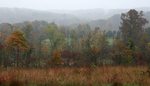 A hazy fall day over the hills in Hoosier National Forest.