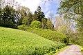 Horn-Bad Meinberg - 2015-05-10 - LIP-028 Silberbachtal mit Ziegenberg (7).jpg