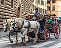 Horse Drawn Carriage, Florence.jpg