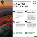 How to organize WLE 2020 (IG-sized).png