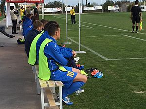 Ukraine at the 2016 Summer Paralympics - Ukrainian players watch the final game of the IFCPF Pre Paralympic Tournament Salou 2016 against Brazil from the bench.