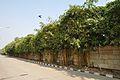 ITC Sonar Boundary Wall - Kolkata 2011-12-08 7496.JPG