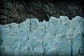 Ice - Flickr - Felipe Del Valle Batalla (1).jpg