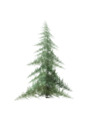 Ifs pine.png