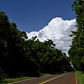 Iguazú, Misiónes, Argentina - panoramio (42).jpg
