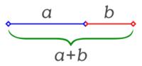 Medidas de la proporción áurea