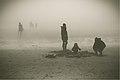 In the mist (explored) (18486152029).jpg
