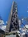 Infinity Tower and jacaranda trees, Brisbane 2018.jpg