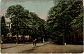 Ingang Kapellerlaan postcard no. 1597 recto.jpg