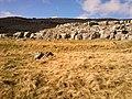 Ingleton, UK - panoramio (11).jpg