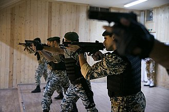 65th Airborne Special Forces Brigade - Image: Iranian green beret commandos (7)