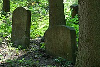 Jüdischer Friedhof Cramberg 3.jpg