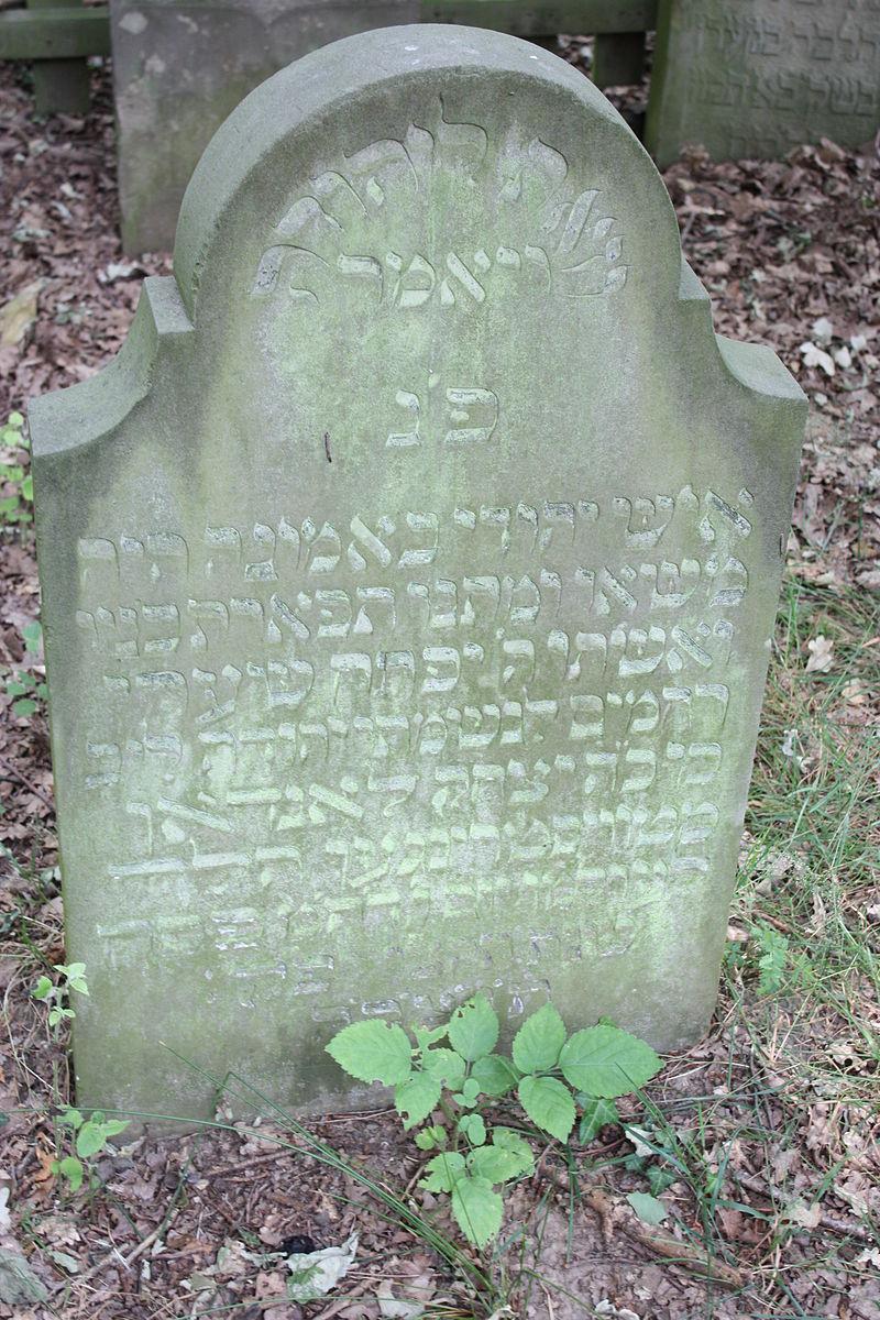 Jüdischer Friedhof Twistringen 2010 043.JPG