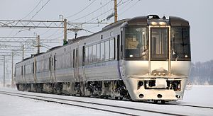 Kamui (train) - A 785 series EMU on a Super Kamui service in January 2009
