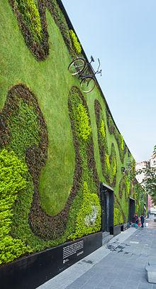 Pared de cultivo wikipedia la enciclopedia libre for Paredes verticales de plantas