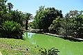 Jardim Agricola Tropical - panoramio (2).jpg