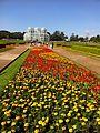 Jardim Botânico - Curitiba.JPG