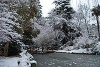 Parque del Retiro en invierno