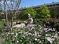 Jardins du Palais Royal (8261197992).jpg